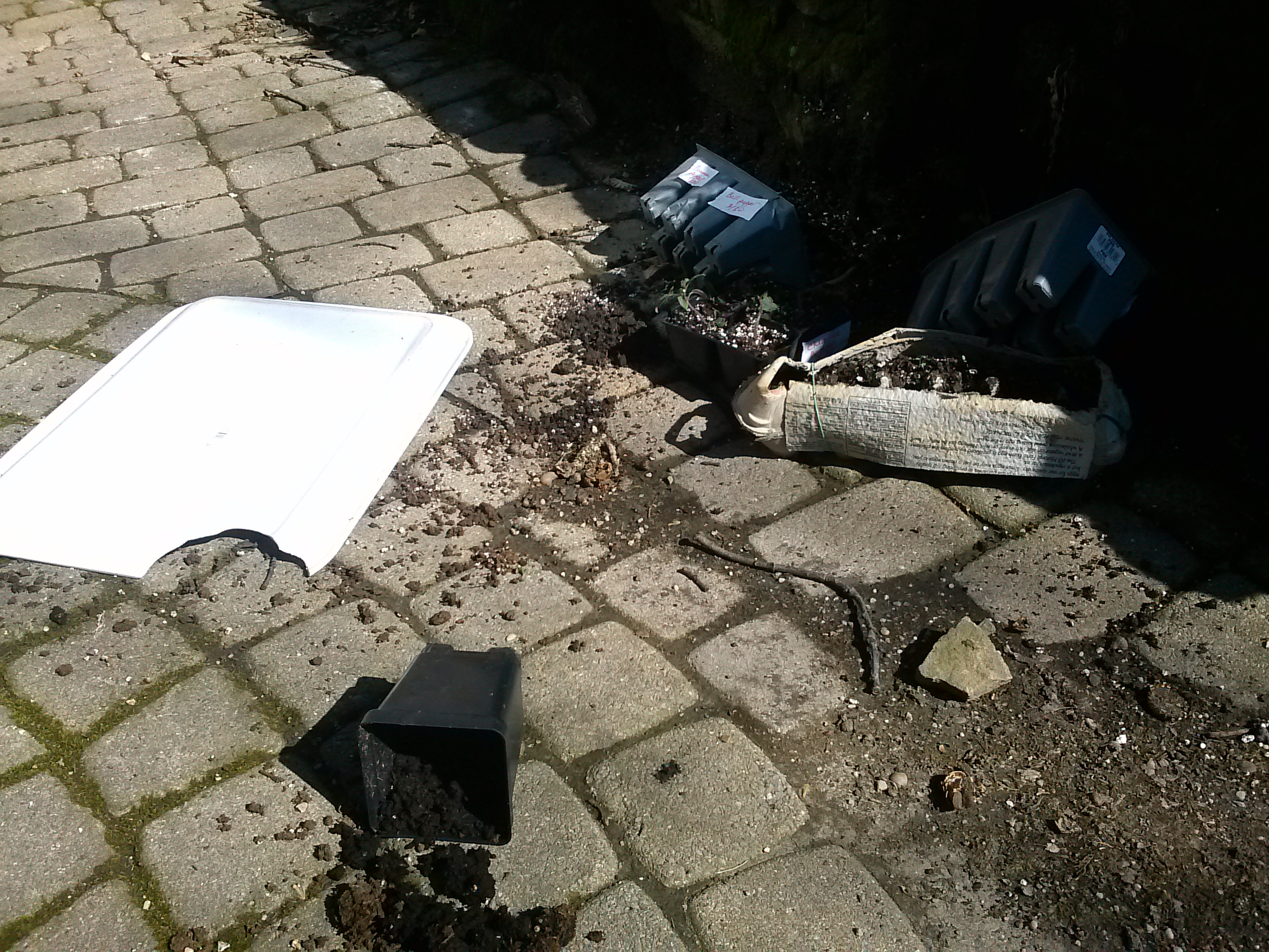 What are the Requirements for Crime Scene Cleanup?
